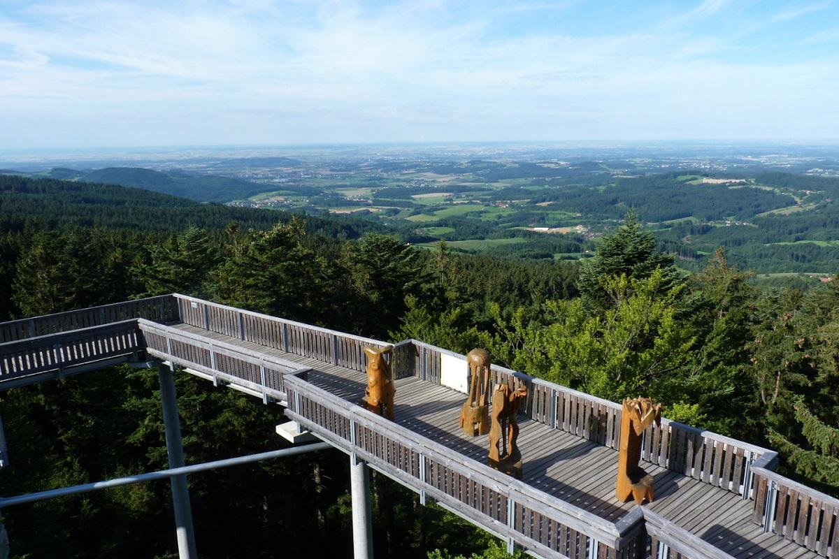 Waldwipfelweg 002_1